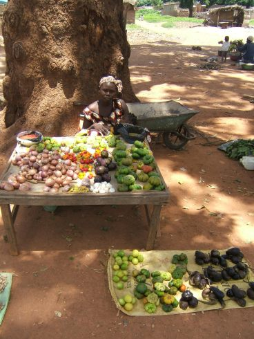 A place to buy tomatoes and many other exotic things I had never eaten