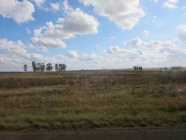 Gaucho land