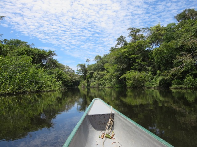 Cruising down the Rio Cuyabeno